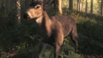 The Hunter, Vídeo oficial 2