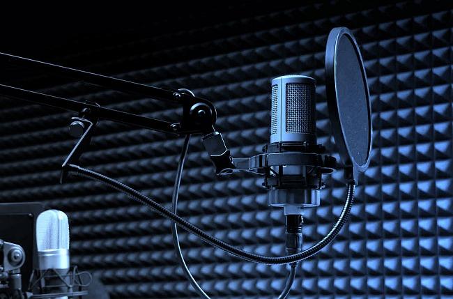 The voice actors